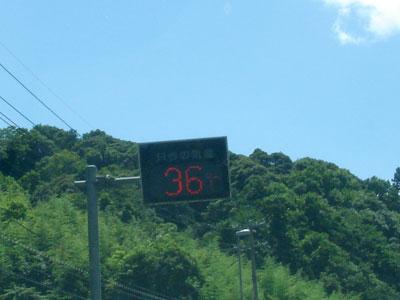 54号温度計