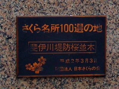 木次の桜2009