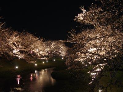 玉湯の桜 2009