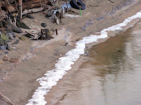 宍道湖の波打ち際が凍った
