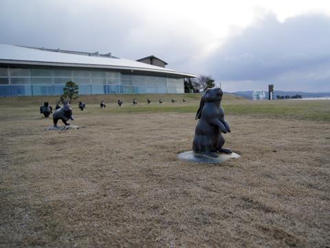 宍道湖うさぎ