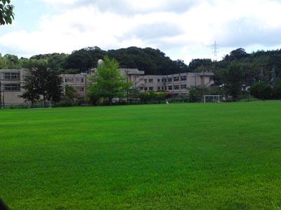 宍道小学校 校庭芝生化