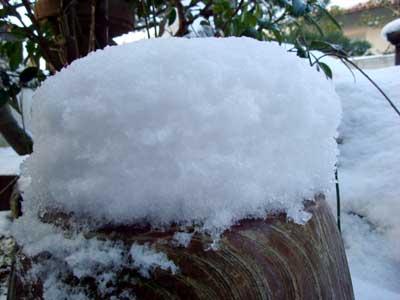 積雪は20cm弱