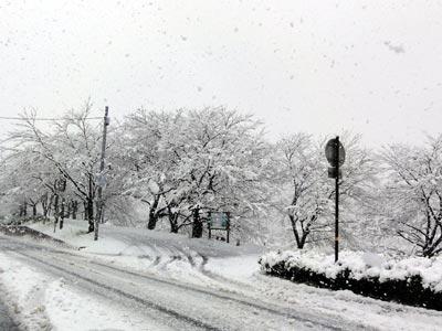 2010年3月9日 雲南市木次町 大雪