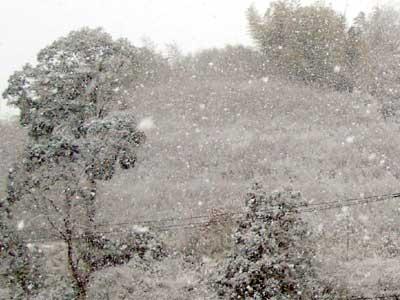 山陰地方 けっこうな雪