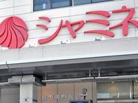 Cepo..STATICE(セポスターチス)シャミネ松江店