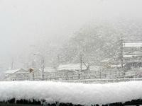 今冬最後の大雪?