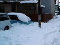 2011年1月の気象データ