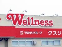 ドラッグストア ウェルネス 浜田西店