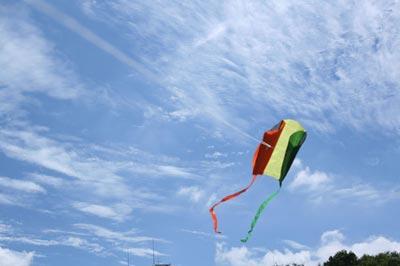 flokk(フロック) Earth kite(アースカイト)