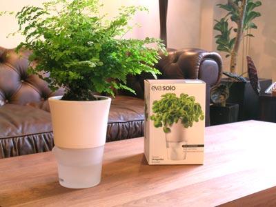 evasolo(エバソロ)手のかからない植木鉢 「フラワーポット(小)」