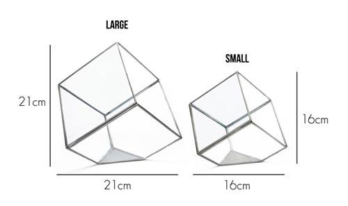 アンティークっぽい四角形なテラリウムケース GEO TERRARIUM