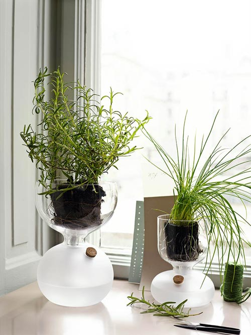 HOLMEGAARD(ホルムガード)GAIA PLANT GLASS(ガイア プラントガラス)