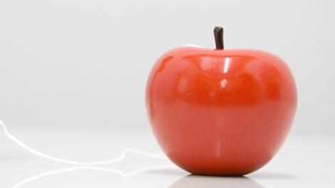けん玉の「玉」がりんご! more trees りんごのけん玉