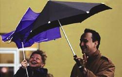 オランダからやってきた空気力学を用いた斬新なデザイン傘「SENZ Umbrella」