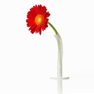 100% Straw Vase(ストローベース)