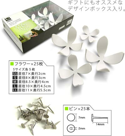 umbra(アンブラ)Wall Flower(ウォールフラワー)