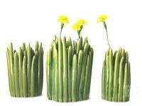 norman COPENHAGEN Grass Vase