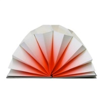 広げると美しいデザインが現れる蛇腹ファイル HAY plisse