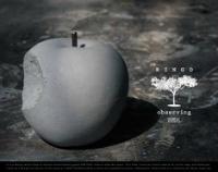 コンクリート製のリンゴ VANDAL RINGO object